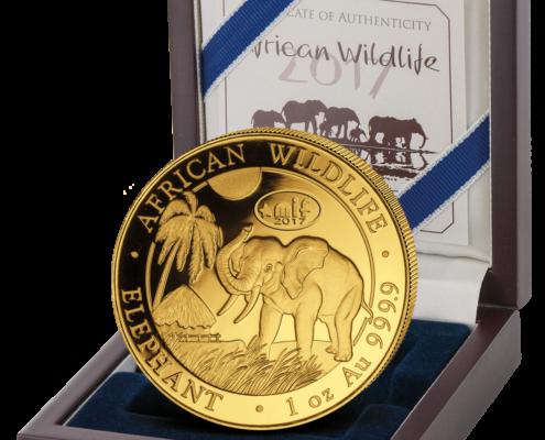 Maastricht International Fair – MIF Gold Elephant